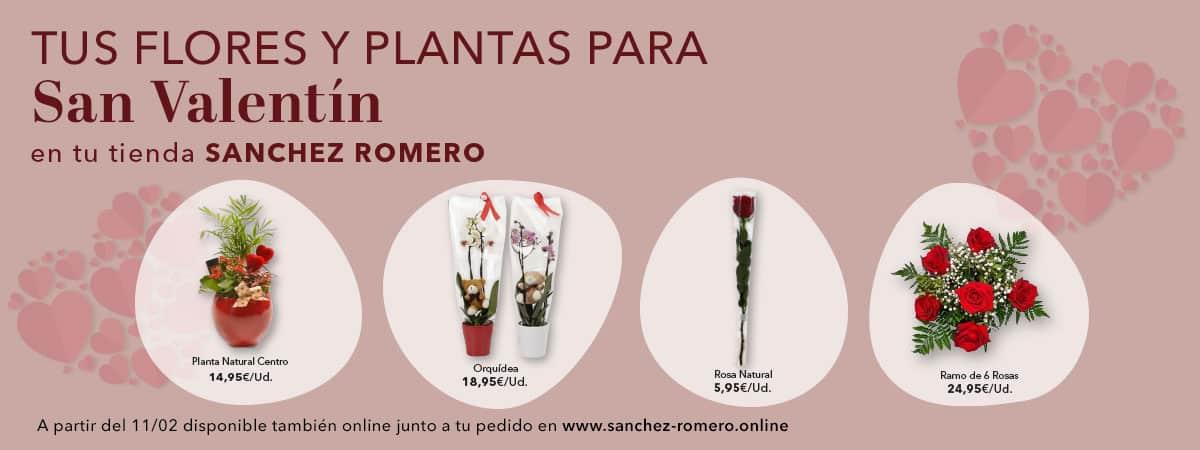 San Valentin en Sanchez Romero